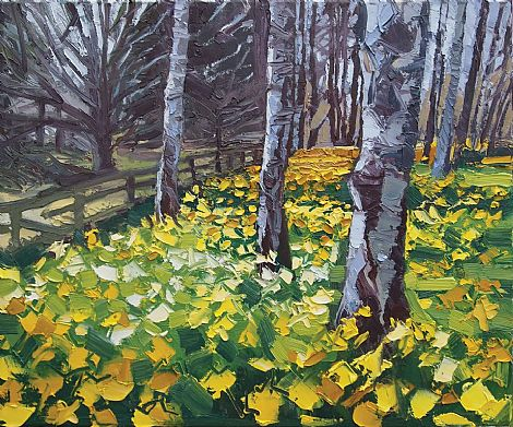 Click to enlarge Daffodils at Stangmore by Paul Donaghy