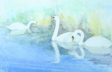 Click to enlarge Swans by Tom Carr