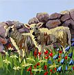 View Spring Lambs