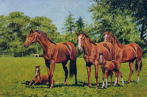 Click to enlarge Horses by Stephen Park