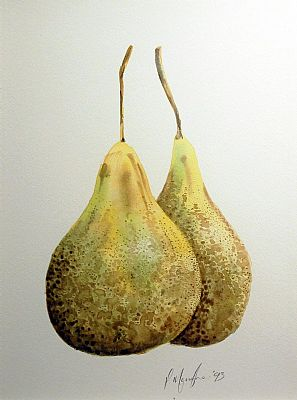 Click to enlarge Pears by Peter Monaghan